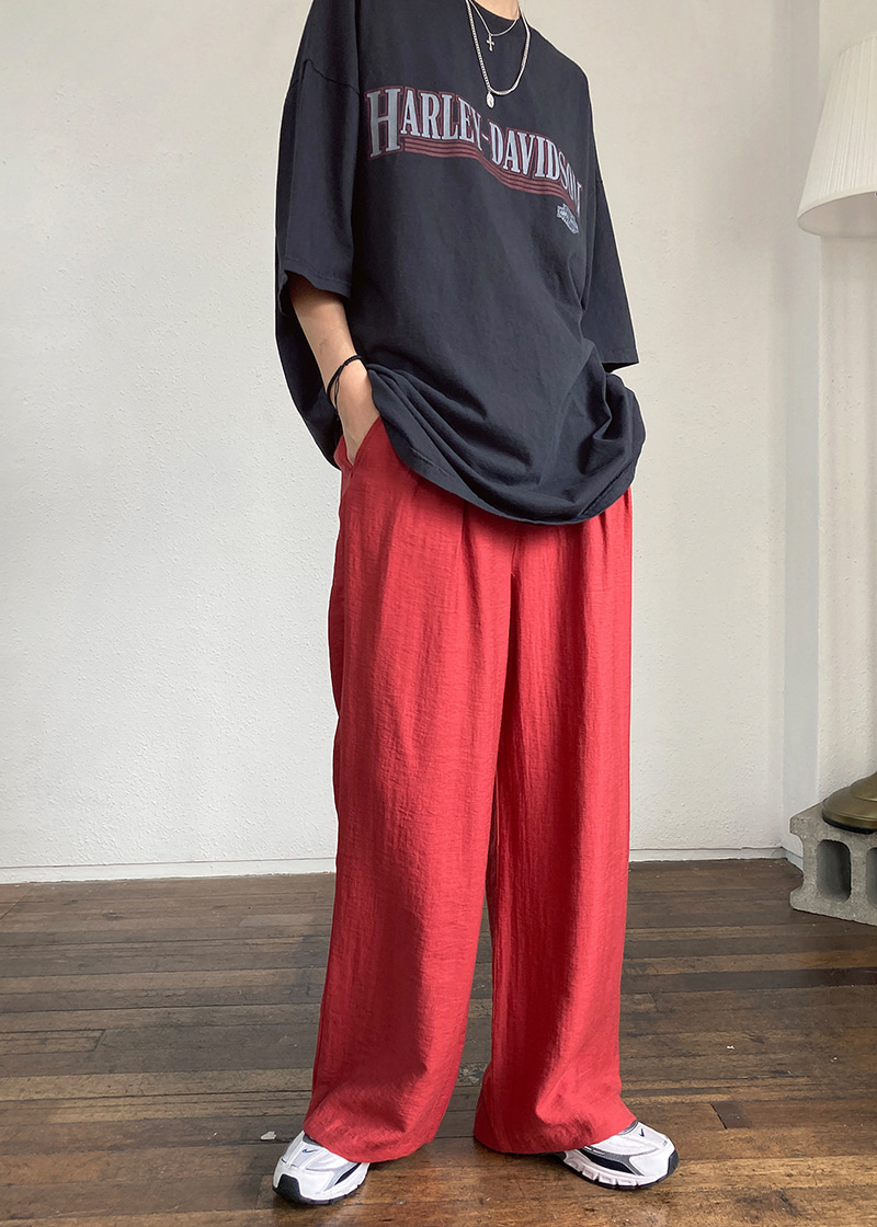 muse wide pants (2c)